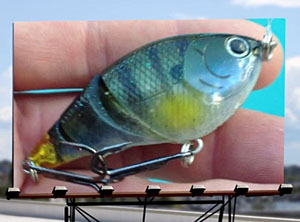 """Probass Networks: Top Lure Company """"Swings and Misses"""" by"""